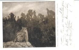 POSTAL    -BRUNO LILJEFORS -UFVEN DJUPT INNE I SKOGEN (1895) GÖTEBORGS MUSEUM - Postales