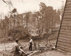 Norfolk Regis Silver Fox Farm Elevage De Renards Argentés Ancienne Photo 1931 - Professions