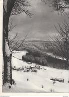 1948 - Héliogravure - Belmont (Bas-Rhin) - La Hutte - FRANCO DE PORT - Old Paper