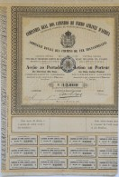 Share - Comp. Real Dos Caminhos De Ferro Atravez D'Africa - 90$000 1886 - Magazines: Subscriptions