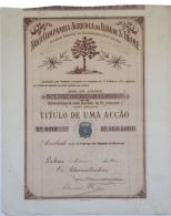 Share - Nova Comp. Agricola Da Ilha De S. Thomé - 100$000 1912 - Magazines: Subscriptions