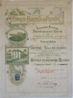 Share - Empreza Agricola Do Principe -  1.000$00 1923 - Magazines: Subscriptions