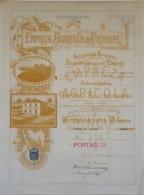 Share - Empreza Agricola Do Principe -  100$00 1923 - Magazines: Subscriptions
