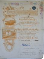 Share - Empreza Agricola Do Principe - 100$000 1901 - Magazines: Subscriptions