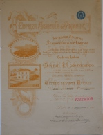 Share - Empreza Agricola Do Principe - 100$000 1900 - Magazines: Subscriptions