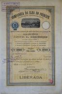 Share - Companhia Da Ilha Do Principe - 100$000 1908 - Magazines: Subscriptions