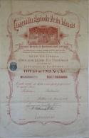 Share - Comp. Agrícola Praia Inhame - 100$00 1914 - Magazines: Subscriptions
