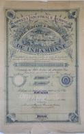 Share - Empreza Industrial E Agricola De Inhambane - 100$000 1905 - Magazines: Subscriptions