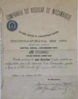 Share - Comp. Do Assucar De Moçambique - 5$000 1901 - Magazines: Subscriptions
