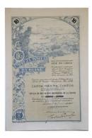 Share - Empreza Insular Da Guiné - 1.000$00 1923 - Magazines: Subscriptions