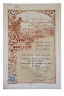 Share - Empreza Insular Da Guiné - 100$00 1923 - Magazines: Subscriptions