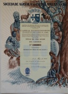 Share - Soc. Agrícola Do Encoge-Miguia, SARL - 1.000$00 1958 - Unclassified