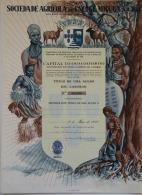 Share - Soc. Agrícola Do Encoge-Miguia, SARL - 1.000$00 1958 - Magazines: Subscriptions