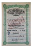 Share - Companhia Agricola De Cazengo - 90$00 1929 - Magazines: Subscriptions