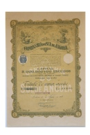 Share - Companhia Do Sul De Angola - 100$00 1923 - Magazines: Subscriptions