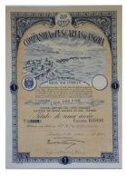 Share - Companhia De Pescarias De Angola - 100$00 1925 - Magazines: Subscriptions