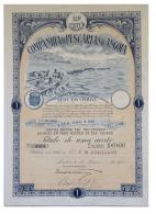 Share - Companhia De Pescarias De Angola - 100$00 1923 - Magazines: Subscriptions