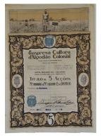 Share - Empresa Cultora D'Algodão Colonial - 500$00 1922 - Magazines: Subscriptions