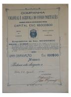Share - Comp. Colonial E Agricola Do Congo Português - 100$00 1915 - Magazines: Subscriptions