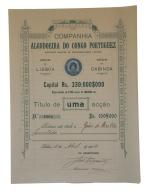 Share - Comp. Algodoeira Do Congo Portuguez - 100$000 1904 - Magazines: Subscriptions