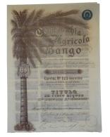 Share - Companhia Agricola Bango - 250$000 1901 - Magazines: Subscriptions