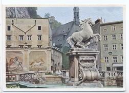 CPSM Salzburg Robschwemme - Salzburg Stadt