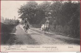 Brasschaat Brasschaet Donck Ekeren Donk Wandeling Te Paard Hoelen Cappellen Geanimeerd (zeer Goede Staat) ZELDZAAM - Brasschaat