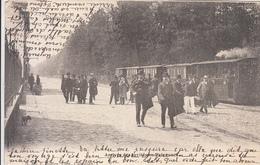 Arrivée Des Invités Au Polygone (top Animation, Tram Stroom Vapeur, Tramway, Hoelen, 1903,...boven Hoek) - Brasschaat