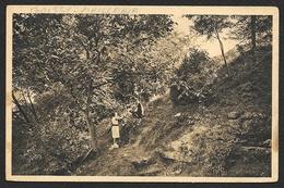 """BOISSY L'AILLERIE """"L'OISEAU BLEU"""" La Colline Maison De Vacances De L'UCJF (Yvon) Val D´Oise (95) - Boissy-l'Aillerie"""