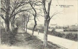 7213 CPA Paimboeuf - Les Remparts - Paimboeuf
