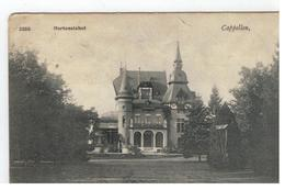 3355 Capellen , Hortensiahof - Kapellen