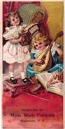 5 Trade Cards   Music String Instruments  La Mandoline Pub  Munn Music C° NY Café Instantané Chic. Vincart      Litho - Autres