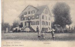 Gruss Aus Uznach - Schweizerhof - 1906     (P-45-60217) - SG St. Gall