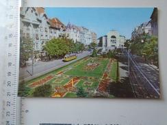 D150537 Timisoara  Theater -   Tram Tramway - Tramways