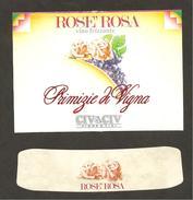 ITALIA - Etichetta Vino ROSATO Cantine CIV&CIV Di Modena Rosato Dell' EMILIA-ROMAGNA - Uva, Rose - Vino Rosato