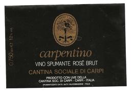 ITALIA - Etichetta Vino CARPENTINO Spumante Rosè Cantine SOC. CARPI Rosato Dell'EMILIA - Falcone Su Albero (carpine) - Vino Rosato