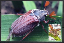 France 2017. Hanneton Issu Du Bloc Les Insectes.Sur Support Papier Photo.Cachet Rond - France