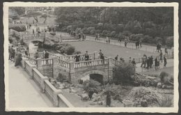 Animated, Unknown River Gardens, C.1950s - Agfa RP Postcard - To Identify