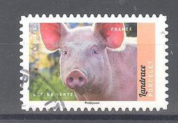 France Autoadhésif Oblitéré (Veau, Vache, Cochon, Couvée ... - Porcelet Landrace) (cachet Rond) - France