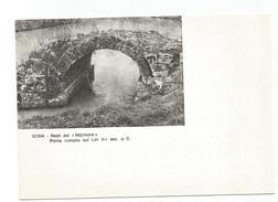 Y3542 Sora (Frosinone) - Mostra Filatelica Numismatica Sorarreda 79 - Fiera 1979 - Resti Del Ponte Marmone - Italia