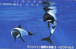 Télécarte Japon ORCA * BALEINE * WHALE (262) HAIFISCH *  * PHONECARD Japan * FISH * POSSON * VIS * - Vissen