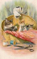 V9856 Cpa Fantaisie - Chats - Katten