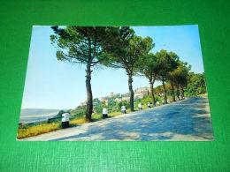 Cartolina Verucchio - Veduta Panoramica 1960 Ca - Rimini