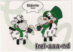 Slainte From Irel-aaa-nd - (The Maaad Sheep) - Ierland
