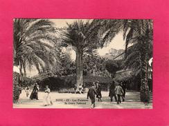 ALGERIE, BONE, Les Palmiers Du Cours National, Animée, (C.C.C. & C.) - Andere Städte