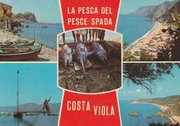 LA PESCA DEL PESCE SPADA  COSTA VIOLA (PF2) - Italy
