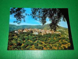 Cartolina Camerota ( Salerno ) - Dintorni Di Palinuro - Panorama 1965 Ca - Salerno
