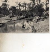 SCENES ET TYPES   66  OASIS DE TOZEUR DOS VERT - Túnez