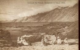 Quebrada San Ramon. Alrededores De Taltal (000471) - Chile