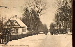 Hillered - Parti Fra Frederiksborg 1919 (000474) - Danemark